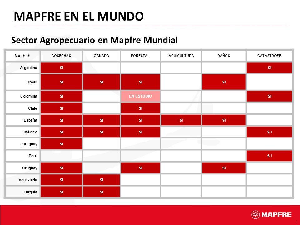 5 MAPFRE EN EL MUNDO Sector Agropecuario en Mapfre Mundial MAPFRE COSECHASGANADOFORESTALACUICULTURADAÑOSCATÁSTROFE ArgentinaSI BrasilSI ColombiaSIEN E