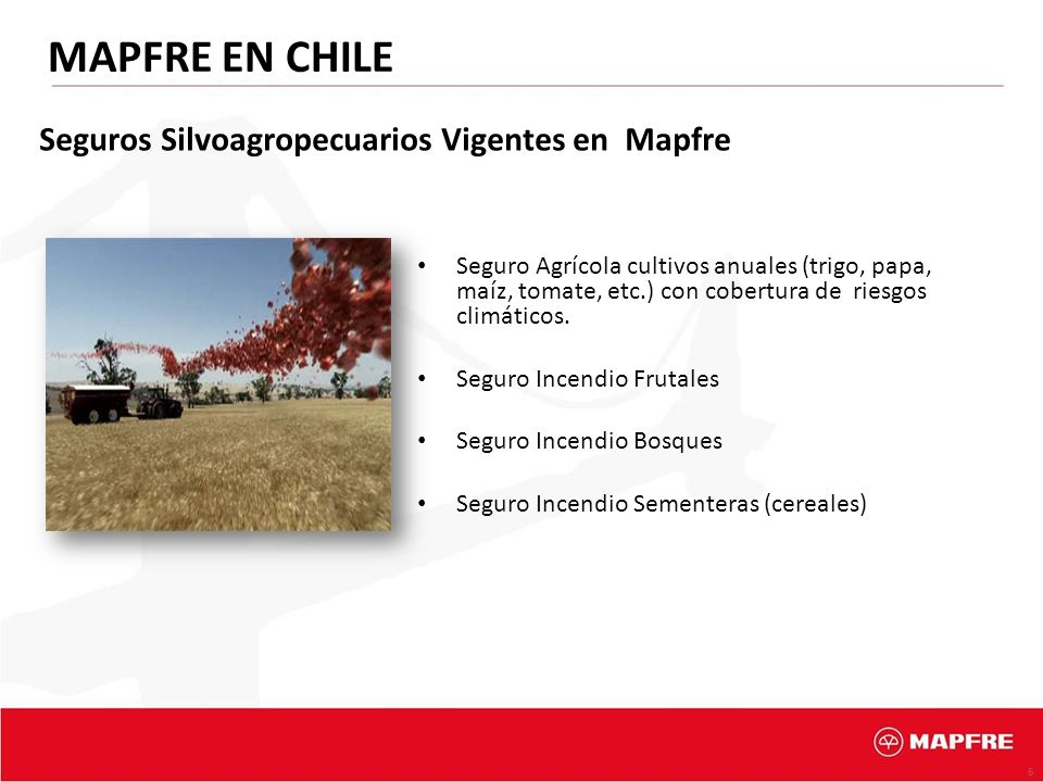 6 MAPFRE EN CHILE Seguro Agrícola cultivos anuales (trigo, papa, maíz, tomate, etc.) con cobertura de riesgos climáticos. Seguro Incendio Frutales Seg