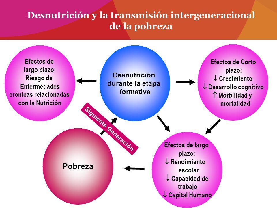 Desnutrición y la transmisión intergeneracional de la pobreza Desnutrición durante la etapa formativa Efectos de largo plazo: Riesgo de Enfermedades c
