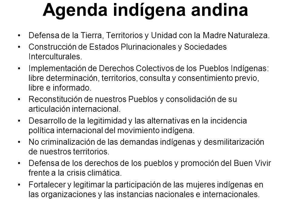 Agenda indígena andina Defensa de la Tierra, Territorios y Unidad con la Madre Naturaleza. Construcción de Estados Plurinacionales y Sociedades Interc