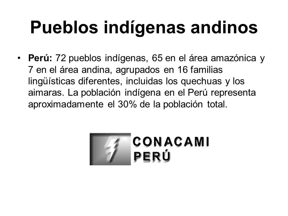 Pueblos indígenas andinos Perú: 72 pueblos indígenas, 65 en el área amazónica y 7 en el área andina, agrupados en 16 familias lingüísticas diferentes,