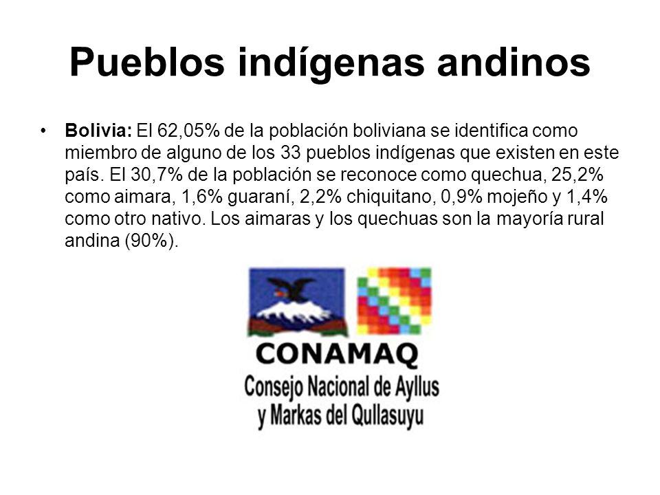 Pueblos indígenas andinos Bolivia: El 62,05% de la población boliviana se identifica como miembro de alguno de los 33 pueblos indígenas que existen en