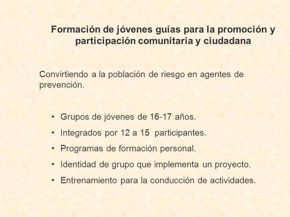 Formación de jóvenes guías para la promoción y participación comunitaria y ciudadana Convirtiendo a la población de riesgo en agentes de prevención.