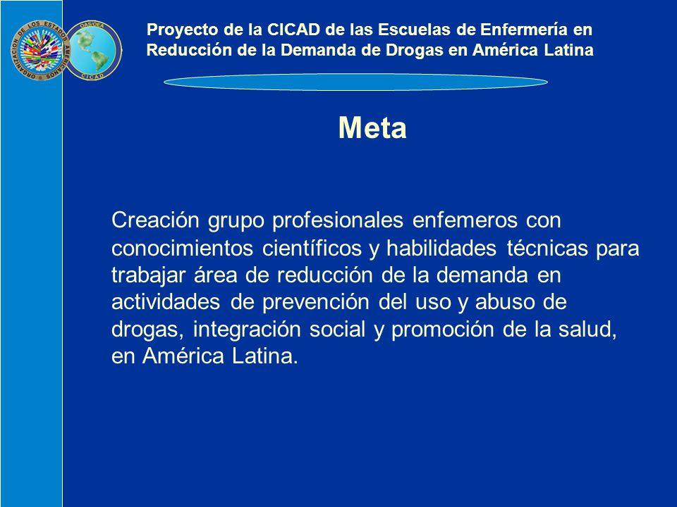 Meta Creación grupo profesionales enfemeros con conocimientos científicos y habilidades técnicas para trabajar área de reducción de la demanda en actividades de prevención del uso y abuso de drogas, integración social y promoción de la salud, en América Latina.