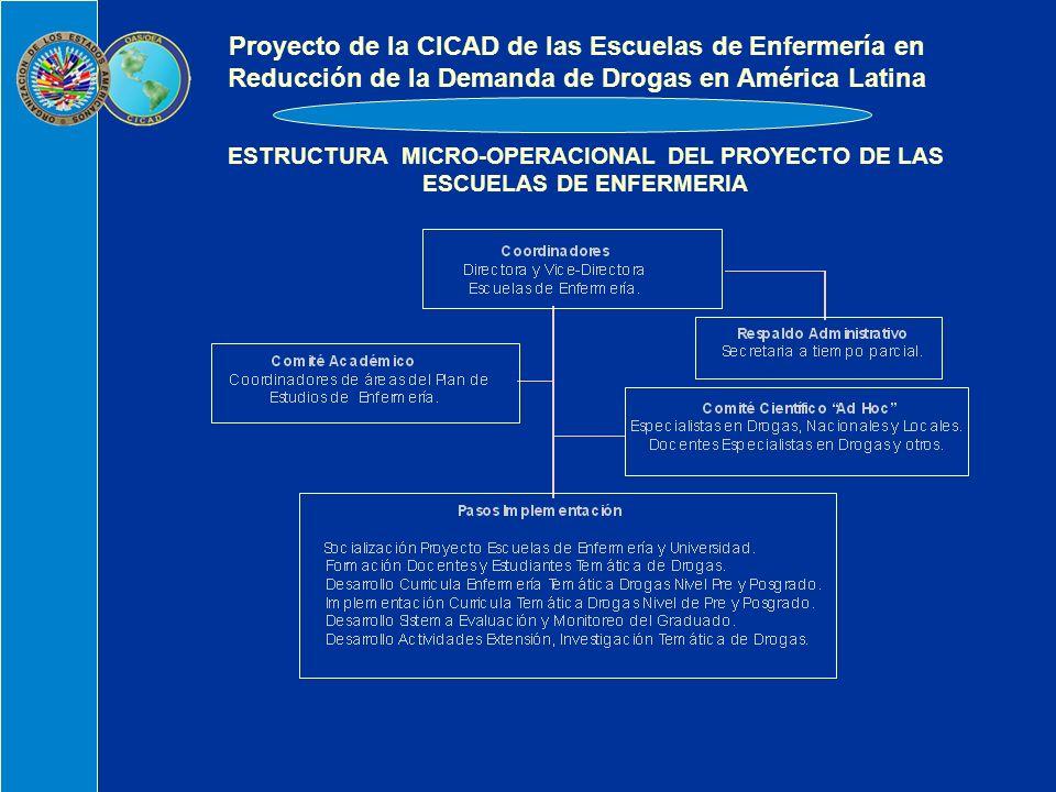 ESTRUCTURA MICRO-OPERACIONAL DEL PROYECTO DE LAS ESCUELAS DE ENFERMERIA Proyecto de la CICAD de las Escuelas de Enfermería en Reducción de la Demanda de Drogas en América Latina