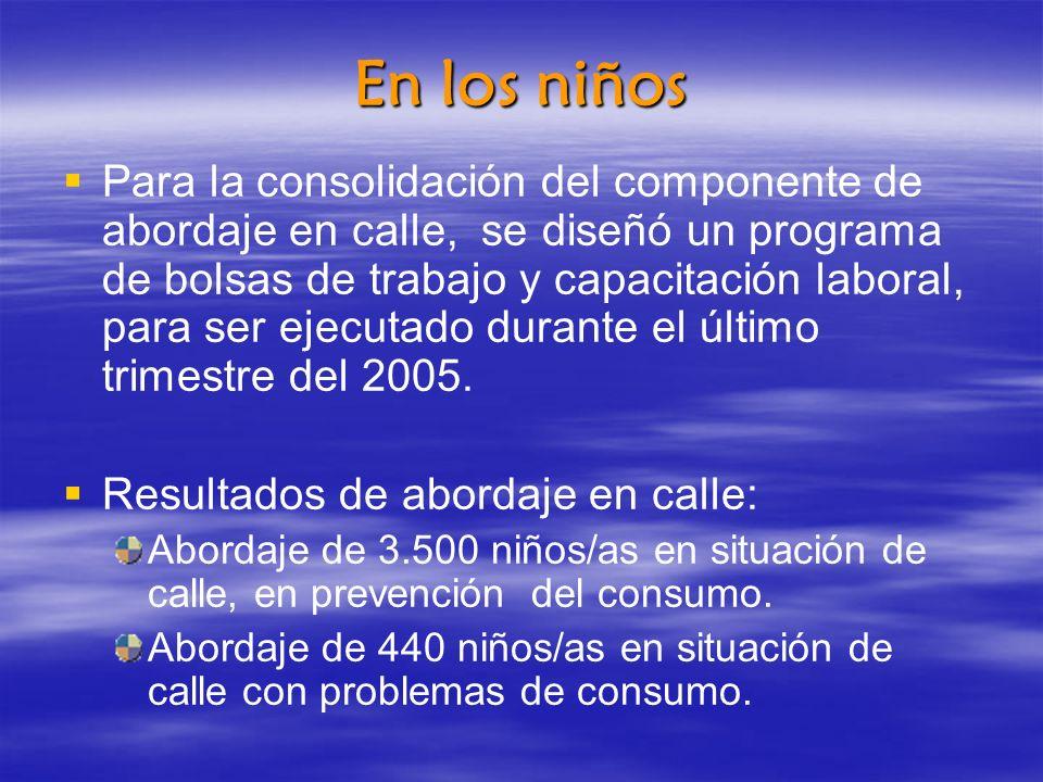 En los niños Para la consolidación del componente de abordaje en calle, se diseñó un programa de bolsas de trabajo y capacitación laboral, para ser ejecutado durante el último trimestre del 2005.