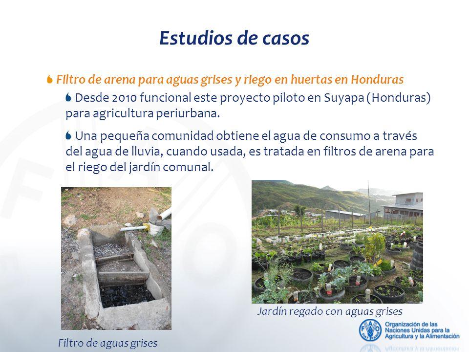 Estudios de casos Filtro de arena para aguas grises y riego en huertas en Honduras Desde 2010 funcional este proyecto piloto en Suyapa (Honduras) para