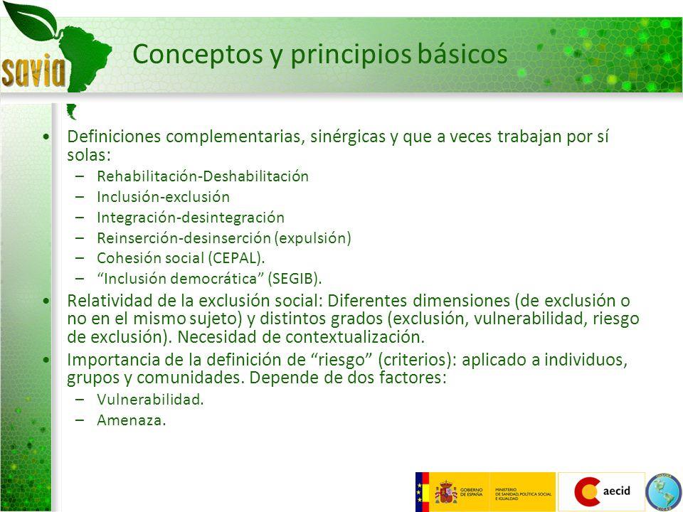 Conceptos y principios básicos Definiciones complementarias, sinérgicas y que a veces trabajan por sí solas: –Rehabilitación-Deshabilitación –Inclusió