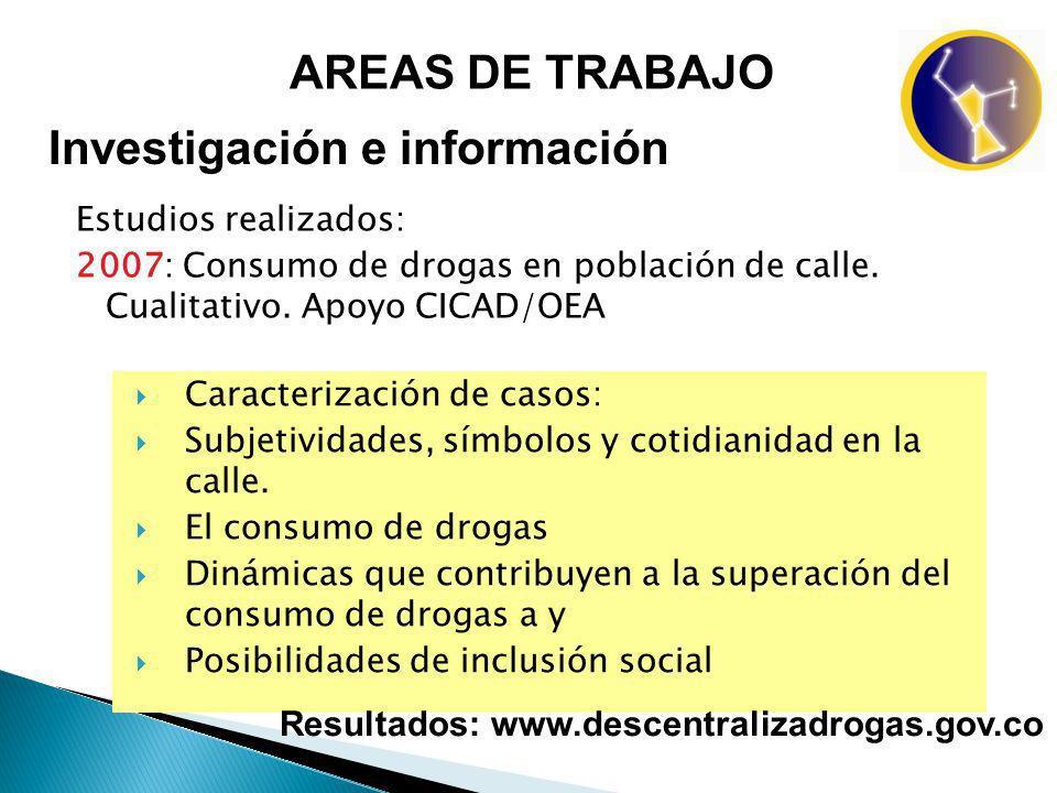 AREAS DE TRABAJO Investigación e información Estudios realizados: 2007: Consumo de drogas en población de calle. Cualitativo. Apoyo CICAD/OEA Caracter