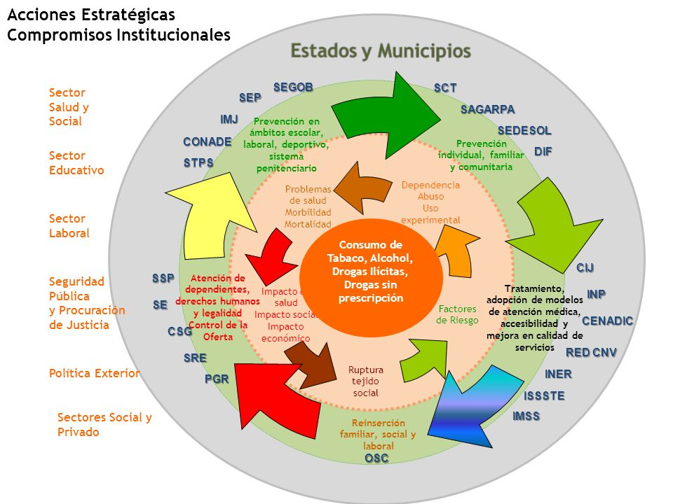 Acciones Estratégicas Compromisos Institucionales Problemas de salud Morbilidad Mortalidad Impacto en salud Impacto social Impacto económico Dependenc
