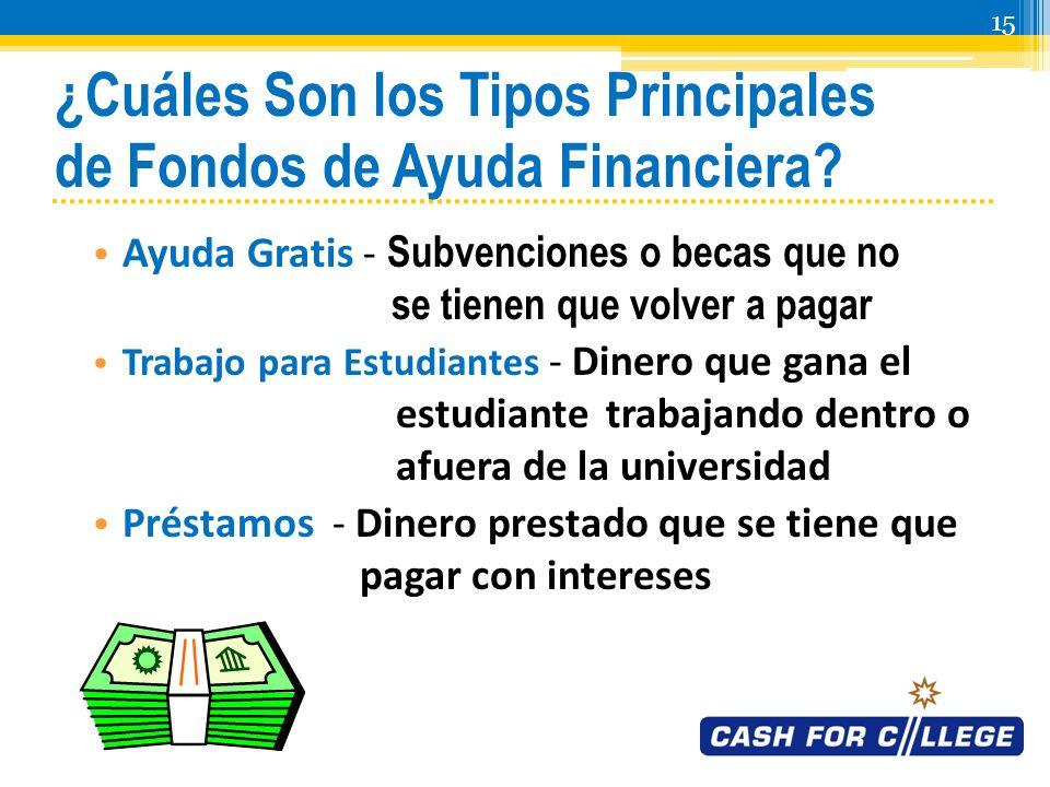 14 ¿Cuál Es la Necesidad Financiera.