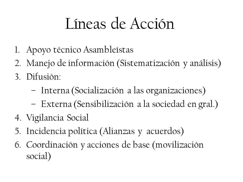 Líneas de Acción 1.Apoyo técnico Asambleístas 2.Manejo de información (Sistematización y análisis) 3.Difusión: –Interna (Socialización a las organizac