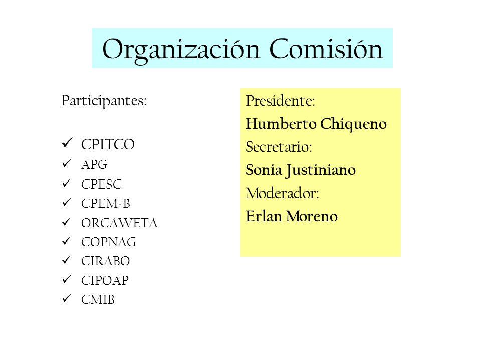 Organización Comisión Participantes: CPITCO APG CPESC CPEM-B ORCAWETA COPNAG CIRABO CIPOAP CMIB Presidente: Humberto Chiqueno Secretario: Sonia Justin