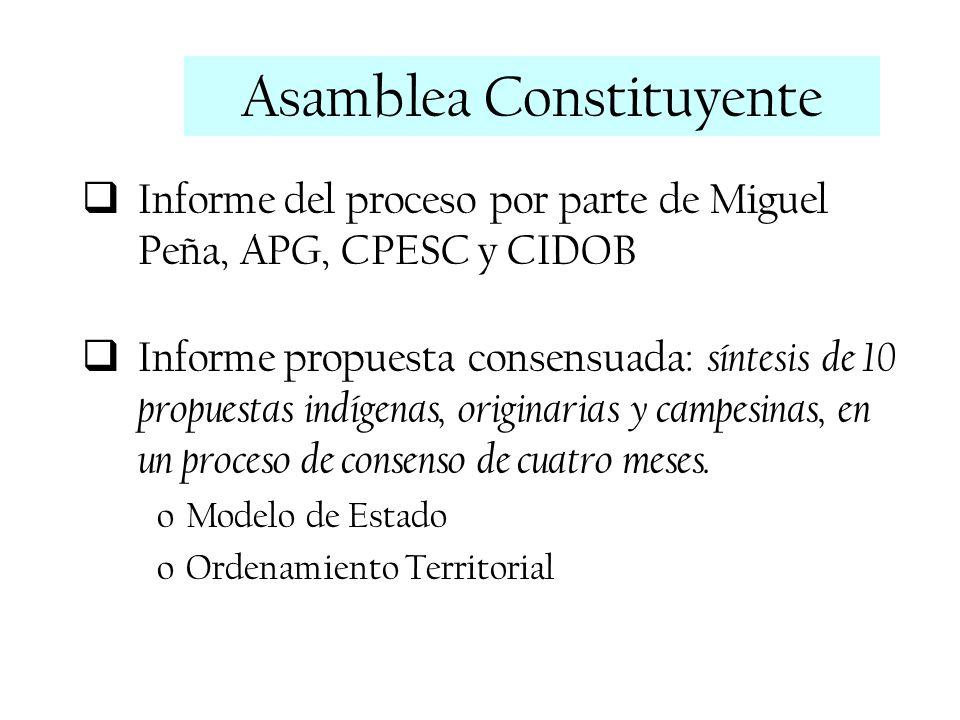 Informe del proceso por parte de Miguel Peña, APG, CPESC y CIDOB Informe propuesta consensuada: síntesis de 10 propuestas indígenas, originarias y cam