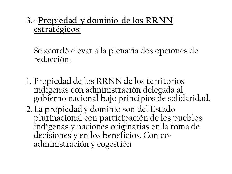 3.- Propiedad y dominio de los RRNN estratégicos: Se acordó elevar a la plenaria dos opciones de redacción: 1.Propiedad de los RRNN de los territorios
