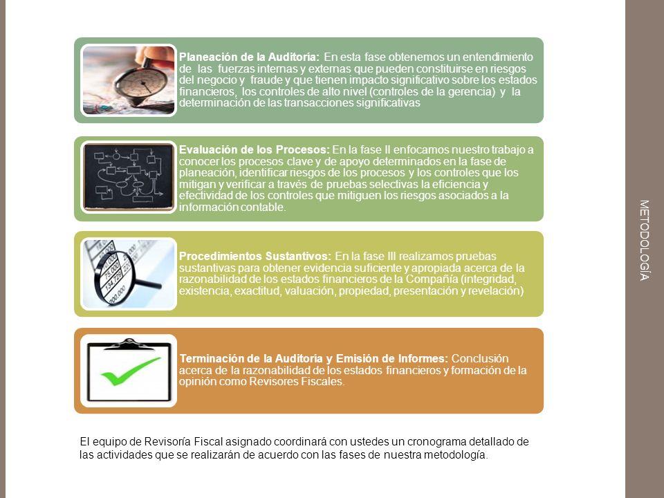 Evaluación de los Procesos Planeación de la Auditoría: En esta fase obtenemos un entendimiento de las fuerzas internas y externas que pueden constitui