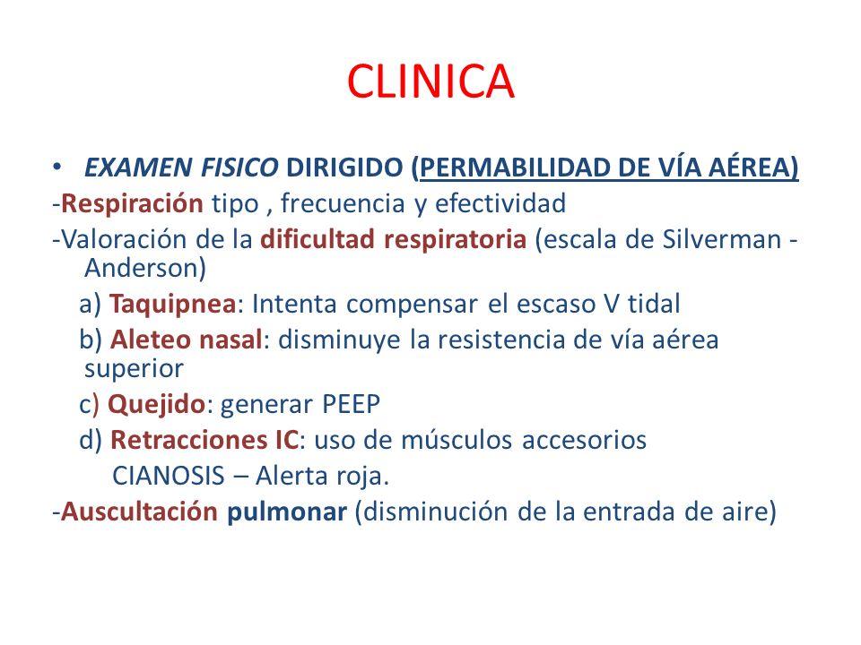 CLINICA EXAMEN FISICO DIRIGIDO (PERMABILIDAD DE VÍA AÉREA) -Respiración tipo, frecuencia y efectividad -Valoración de la dificultad respiratoria (esca