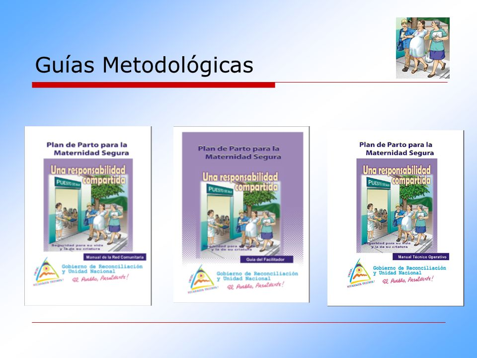 Guías Metodológicas