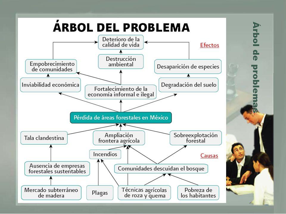 Árbol de problemas Árbol de problemas