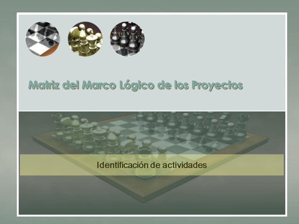 Matriz del Marco Lógico de los Proyectos Identificación de actividades