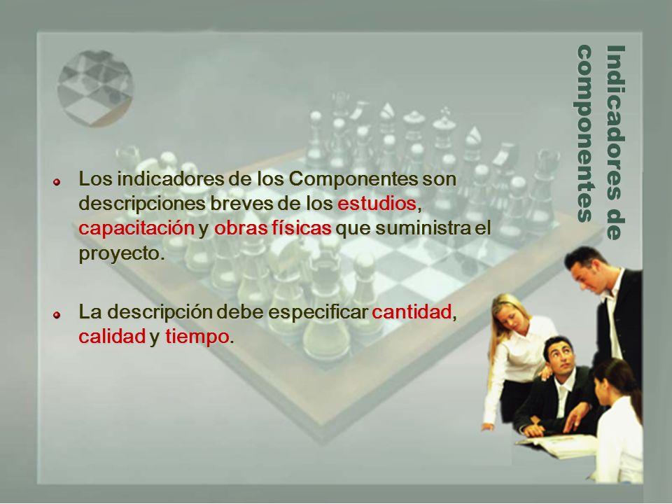 Indicadores de componentes Los indicadores de los Componentes son descripciones breves de los estudios, capacitación y obras físicas que suministra el