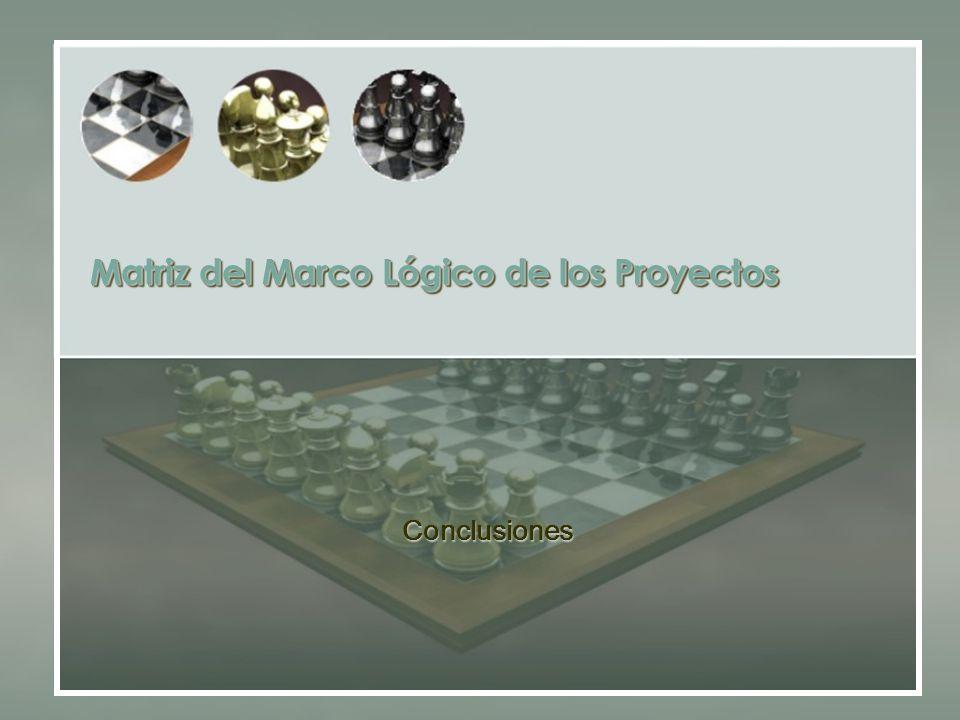 Matriz del Marco Lógico de los Proyectos Conclusiones