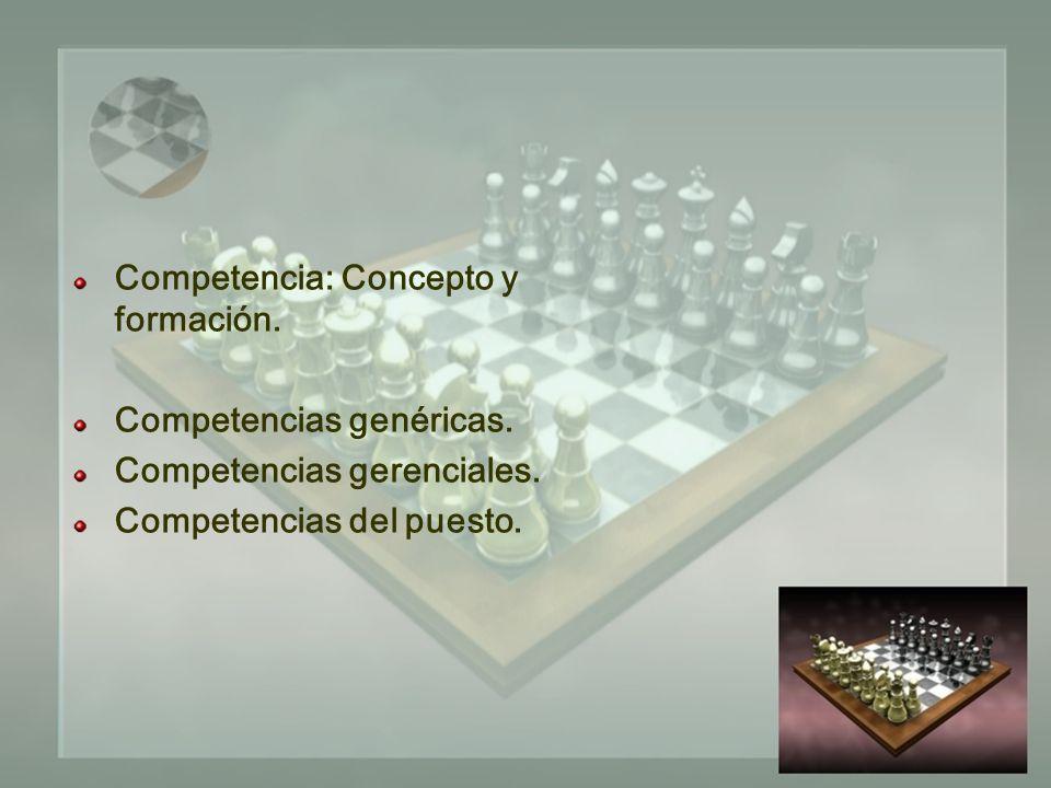 Competencia: Concepto y formación. Competencias genéricas.