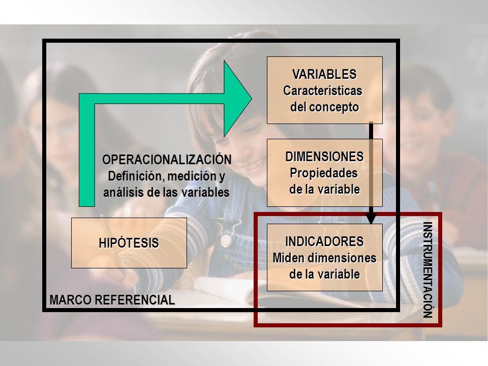 Introducción a los Indicadores AMDG MEC Series 2/8