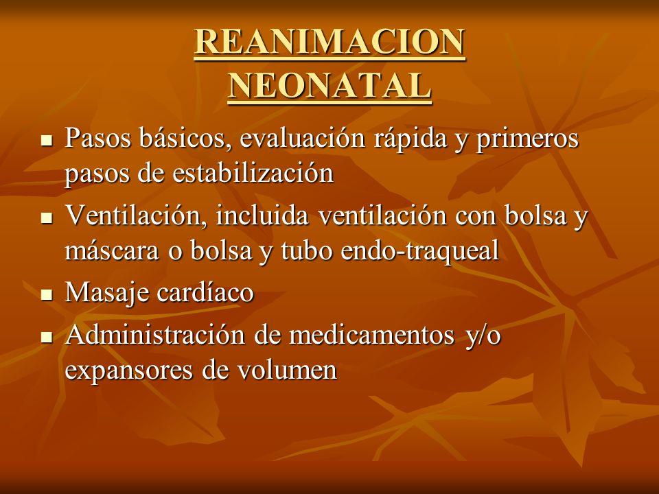 Lección 1: Estimulación Táctil © 20008AAP/AHA Maniobras aceptables para estimular la respiración en un recién nacido