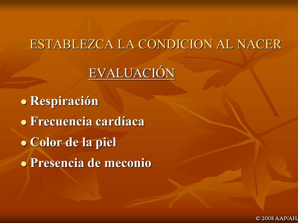 Lección 1: Pasos iniciales (Bloque A) © 2008 AAP/AHA Proporcionar calor Posicionar, despejar la vía aérea.