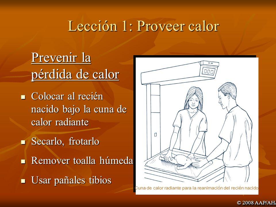 Lección 1: Despejar la vía aérea Posicionarla Posicionarla Extender el cuello ligeramente Extender el cuello ligeramente Posición de olfateo Posición de olfateo Aspirar faringe posterior, laringe, y tráquea si es necesario Aspirar faringe posterior, laringe, y tráquea si es necesario © 2008 AAP/AHA