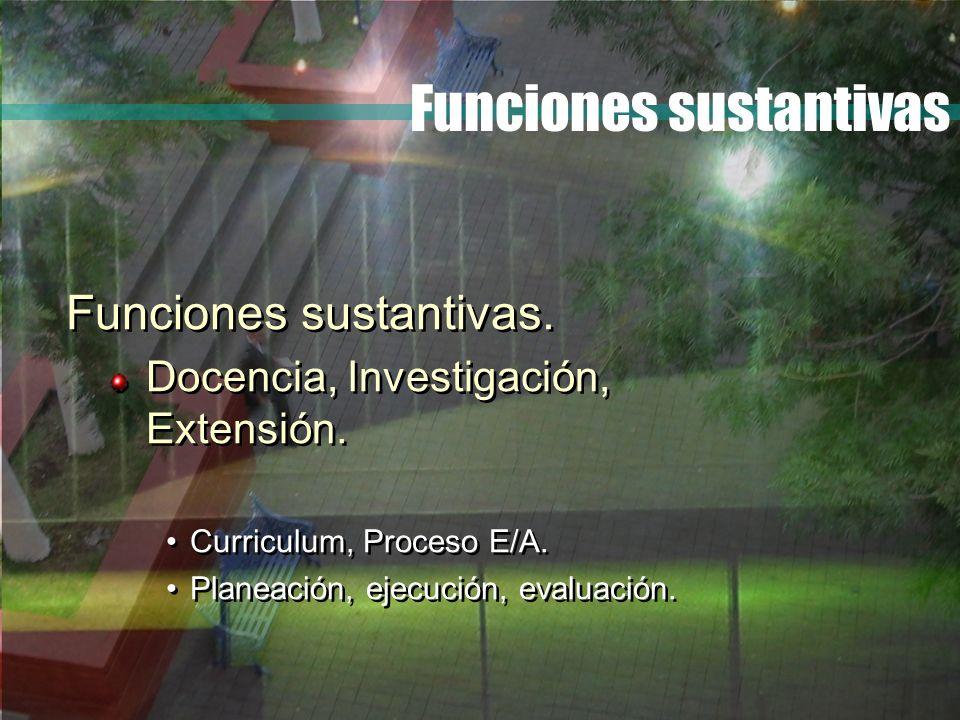 Funciones sustantivas Funciones sustantivas. Docencia, Investigación, Extensión. Curriculum, Proceso E/A. Planeación, ejecución, evaluación. Funciones