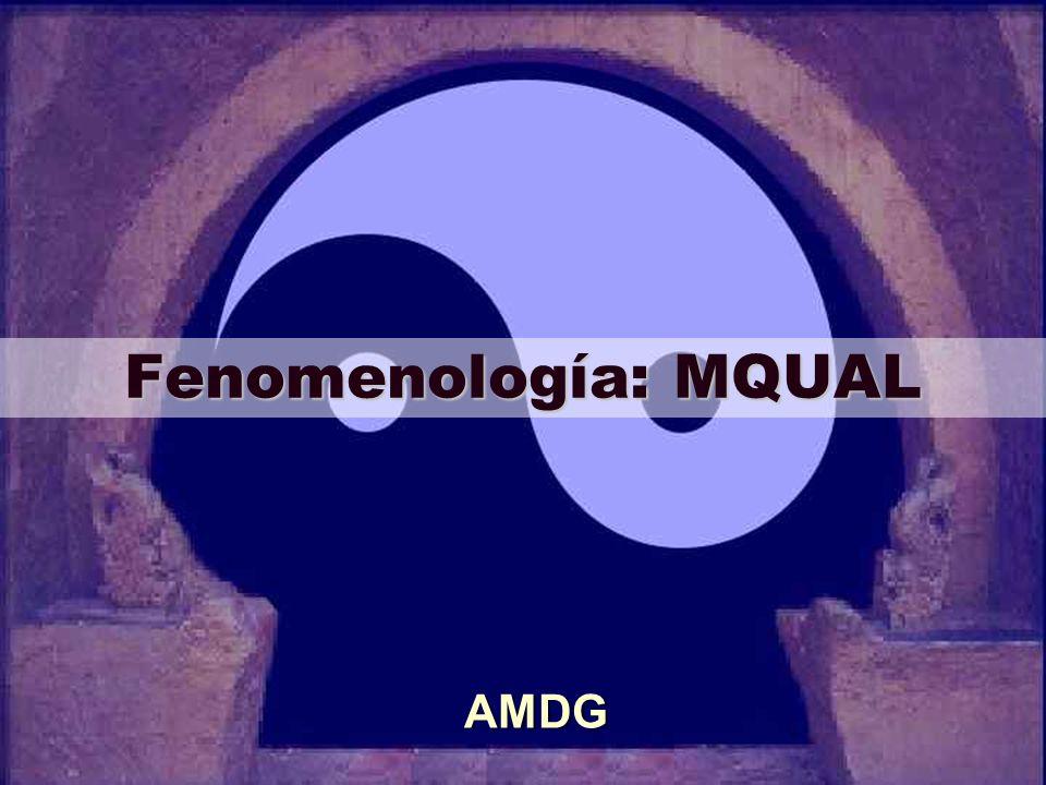 Fenomenología: MQUAL AMDG