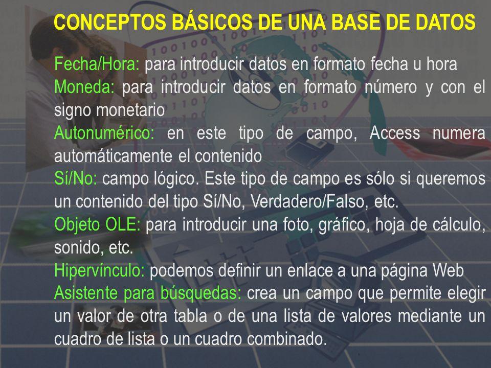 CONCEPTOS BÁSICOS DE UNA BASE DE DATOS Campo: unidad básica de una base de datos. Un campo puede ser, por ejemplo, el nombre de una persona. La descri