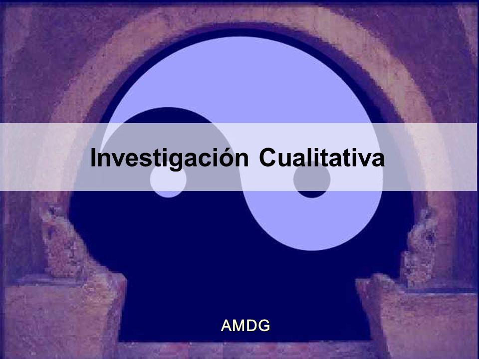 Investigación Cualitativa AMDG