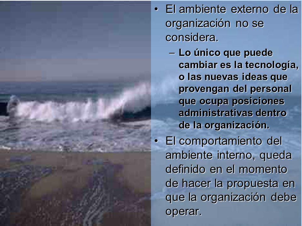 El ambiente externo de la organización no se considera.El ambiente externo de la organización no se considera.