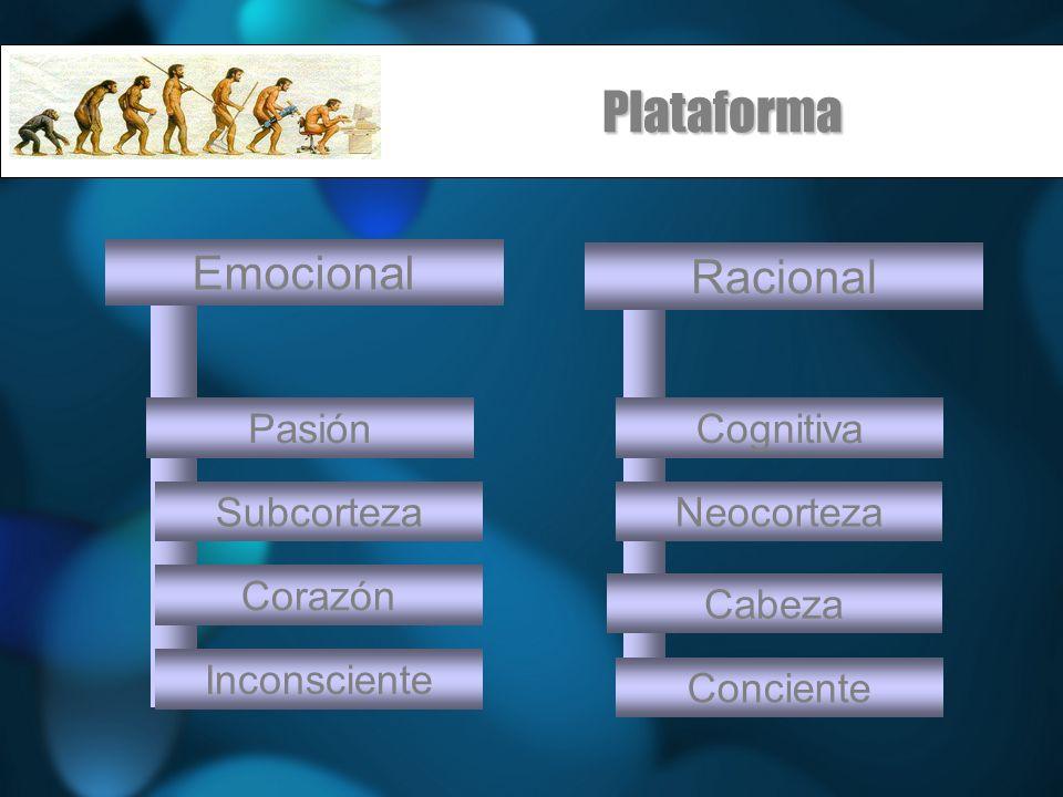 Plataforma Cabeza Emocional Racional SubcortezaNeocorteza PasiónCognitiva Corazón Inconsciente Conciente
