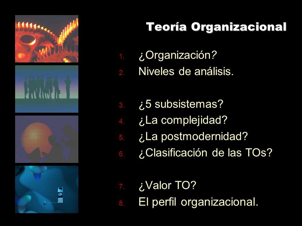 Teoría Organizacional 1.¿Organización. 2. Niveles de análisis.