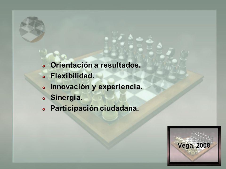 Vega, 2008 Orientación a resultados. Flexibilidad.
