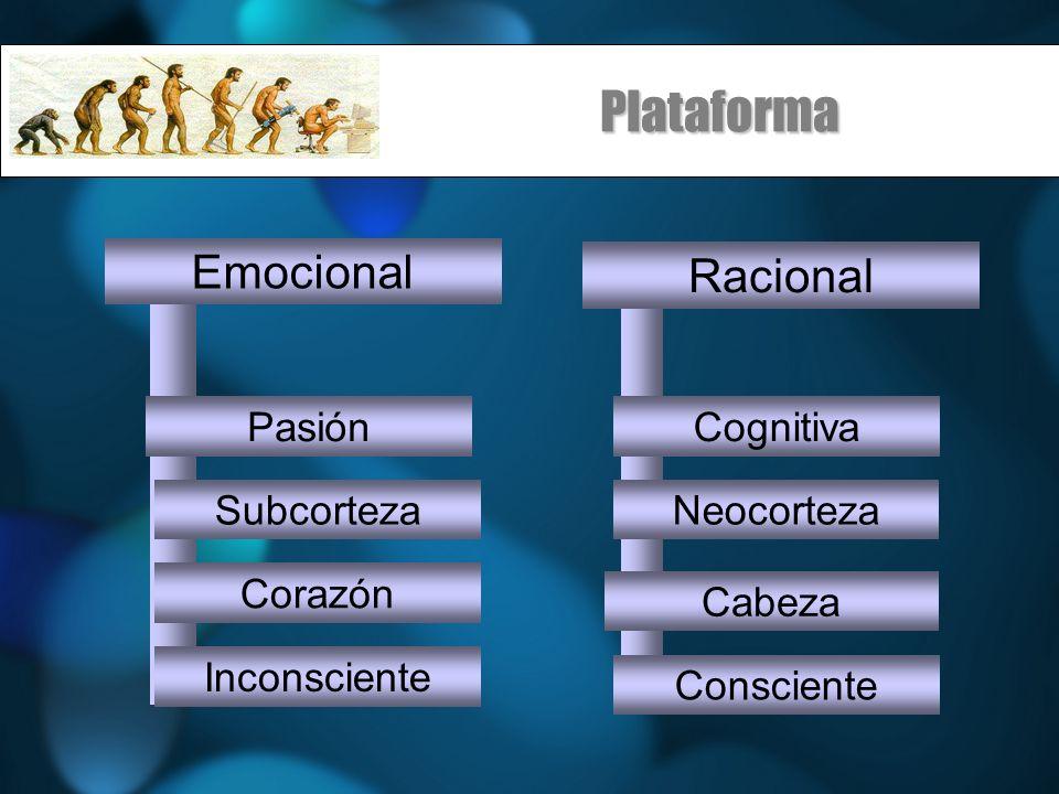 Plataforma Cabeza Emocional Racional SubcortezaNeocorteza PasiónCognitiva Corazón Inconsciente Consciente
