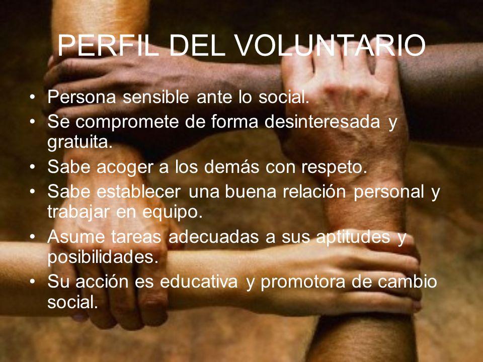 ACTIVIDAD GRUPAL ¿Qué es ser voluntario para ti.¿Qué propósitos podrías asumir.