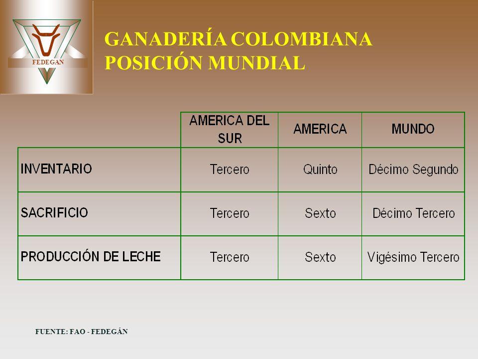 FEDEGAN GANADERÍA COLOMBIANA POSICIÓN MUNDIAL FUENTE: FAO - FEDEGÁN