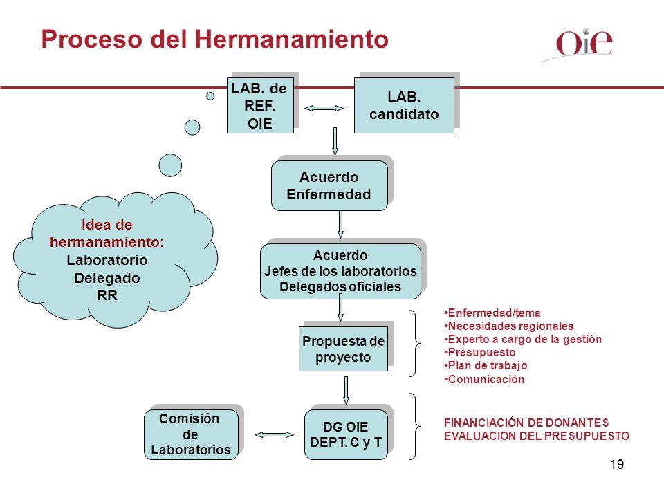 19 Proceso del Hermanamiento LAB. de REF. OIE LAB. de REF. OIE LAB. candidato LAB. candidato Acuerdo Enfermedad Acuerdo Enfermedad Acuerdo Jefes de lo