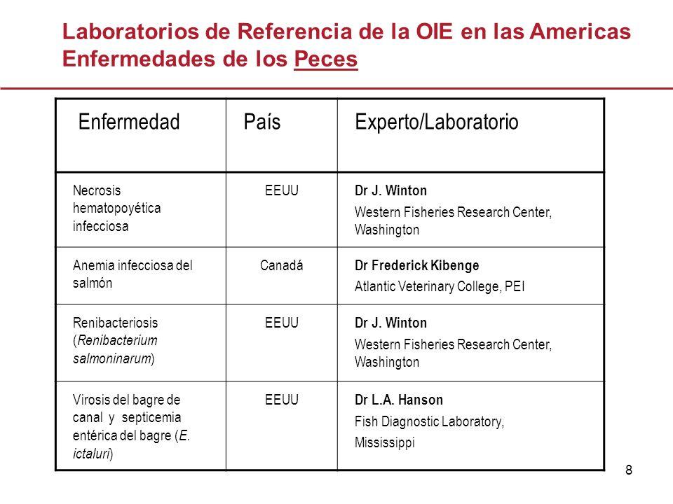 9 EnfermedadPaísExperto/Laboratorio Infección por: Perkinsus olseni ; Perkinsus marinus EEUU Dr E.M.