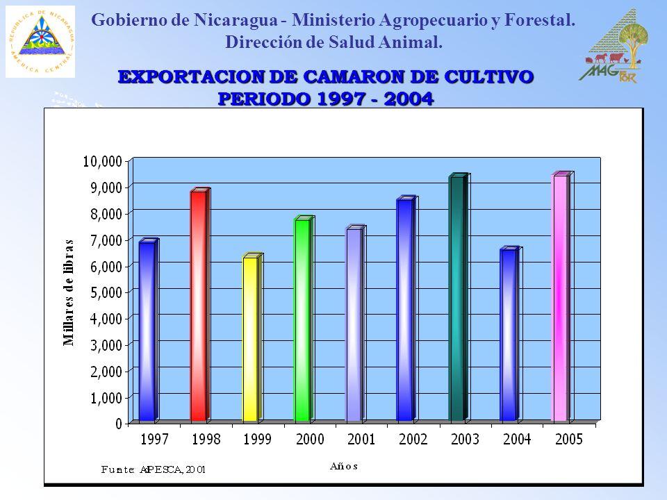 EXPORTACION DE CAMARON DE CULTIVO PERIODO 1997 - 2004 Gobierno de Nicaragua - Ministerio Agropecuario y Forestal. Dirección de Salud Animal.