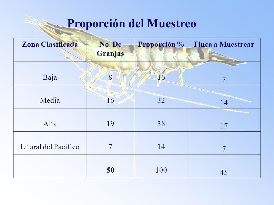 Proporción del Muestreo Zona ClasificadaNo. De Granjas Proporción %Finca a Muestrear Baja816 7 Media1632 14 Alta1938 17 Litoral del Pacifico714 7 5010