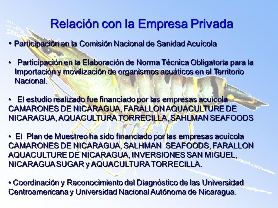 Relación con la Empresa Privada Participación en la Comisión Nacional de Sanidad Acuícola Participación en la Comisión Nacional de Sanidad Acuícola Pa