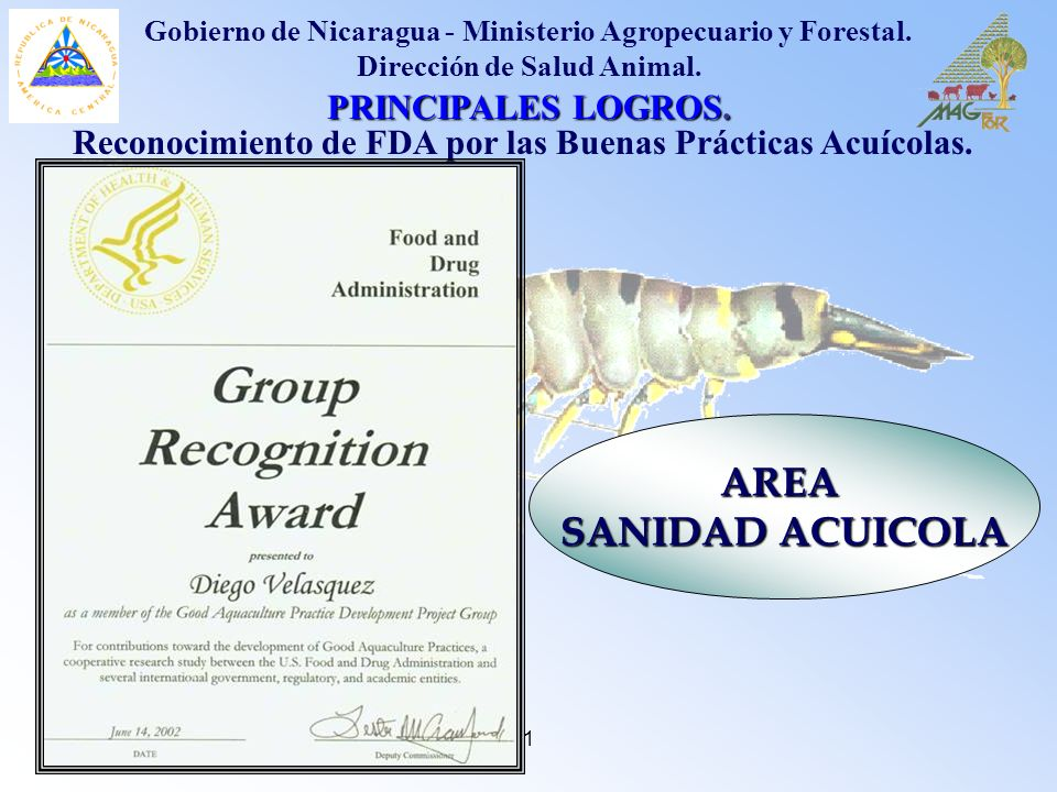 1 PRINCIPALES LOGROS. Reconocimiento de FDA por las Buenas Prácticas Acuícolas. AREA SANIDAD ACUICOLA Gobierno de Nicaragua - Ministerio Agropecuario