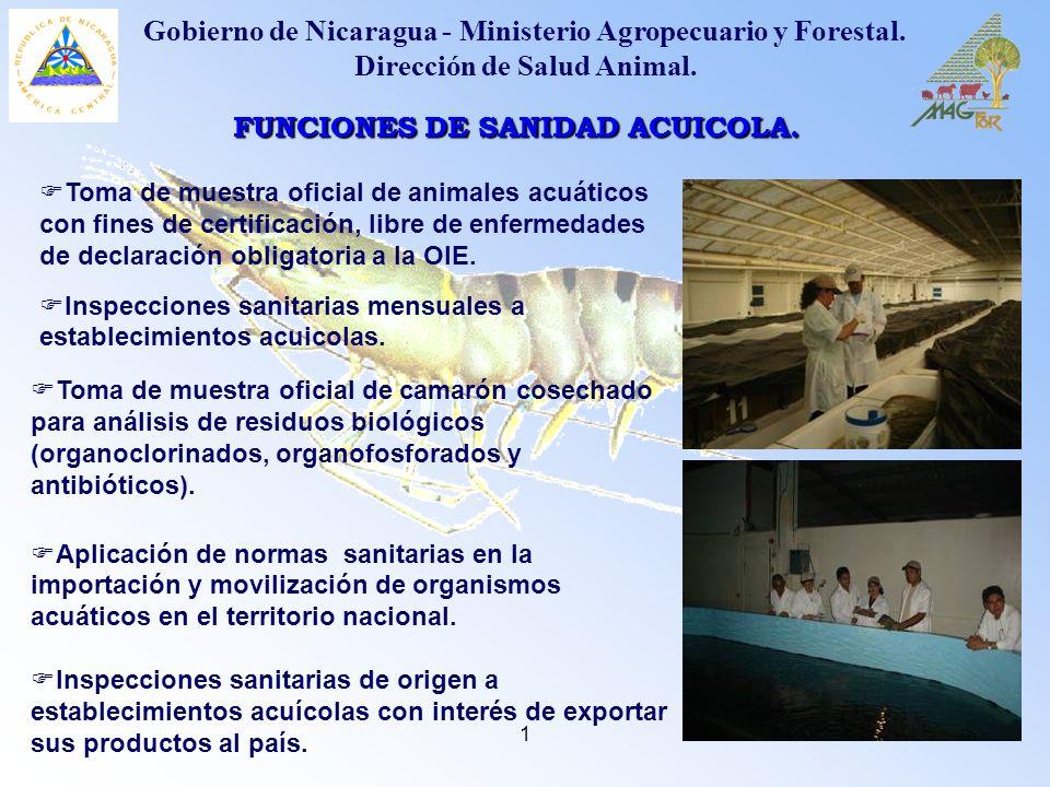 1 Toma de muestra oficial de animales acuáticos con fines de certificación, libre de enfermedades de declaración obligatoria a la OIE. FUNCIONES DE SA