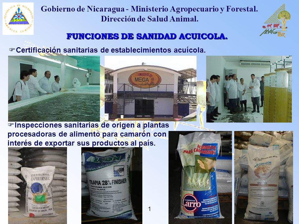 1 FUNCIONES DE SANIDAD ACUICOLA. Gobierno de Nicaragua - Ministerio Agropecuario y Forestal. Dirección de Salud Animal. Certificación sanitarias de es
